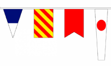 MISCELLANEOUS BUNTING
